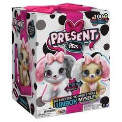 Spin Master Present Pets Present Pets Fashion 11956051197